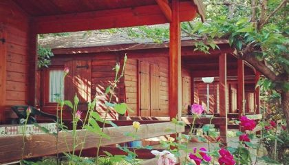bungalow-primavera-420x240