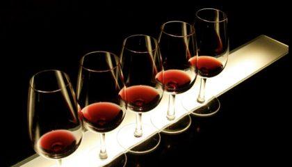 cata-vino-somontano-camping-benabarre-420x240